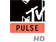 MTV Pulse HD